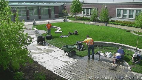 Sod Installation in Winfield